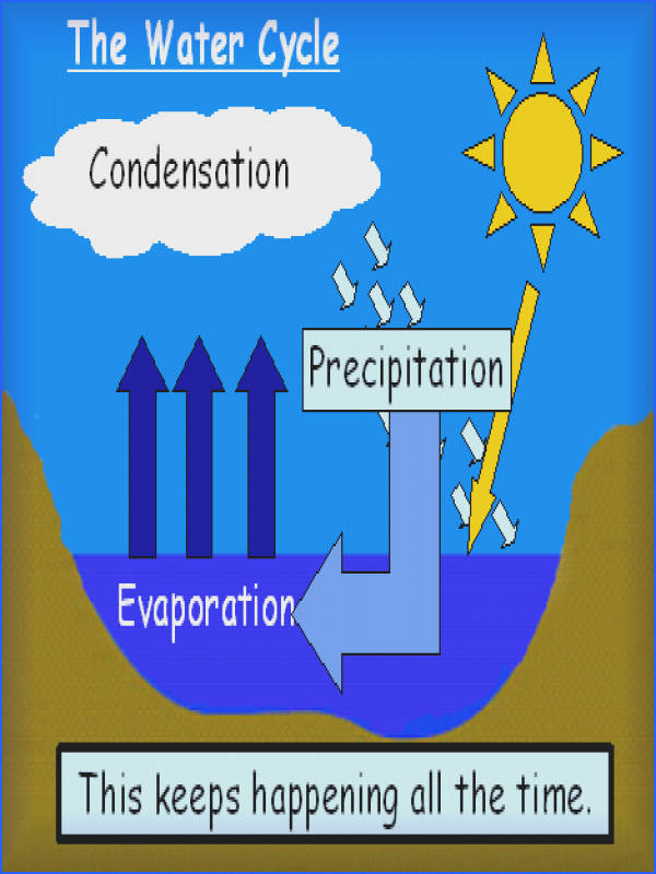 Here s a nice PPT on the water cycle