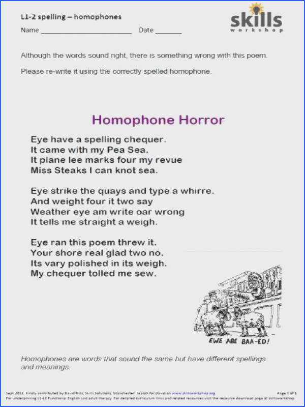 Homophone And Homograph Worksheets 2