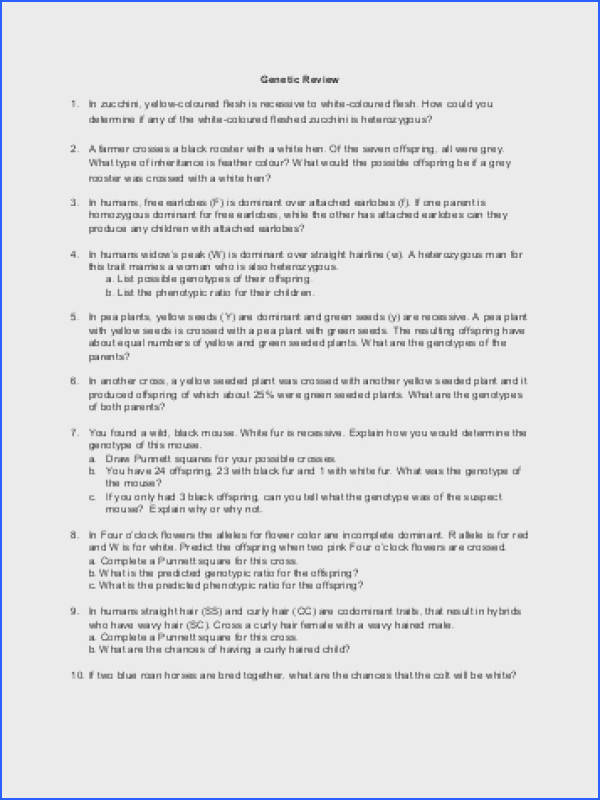 Codominance Worksheet The Best And Most prehensive Worksheets In plete Dominance