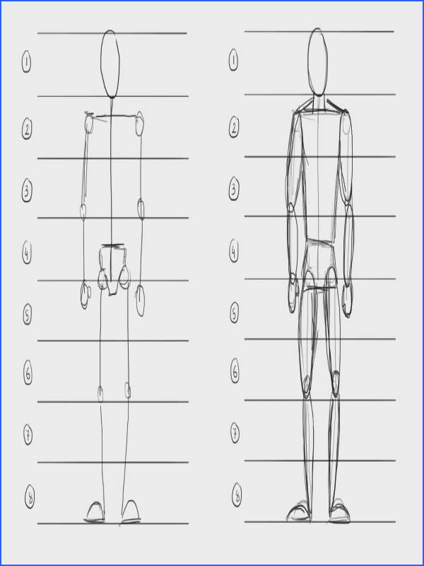Instructions for Drawing the Human Form in Proportion