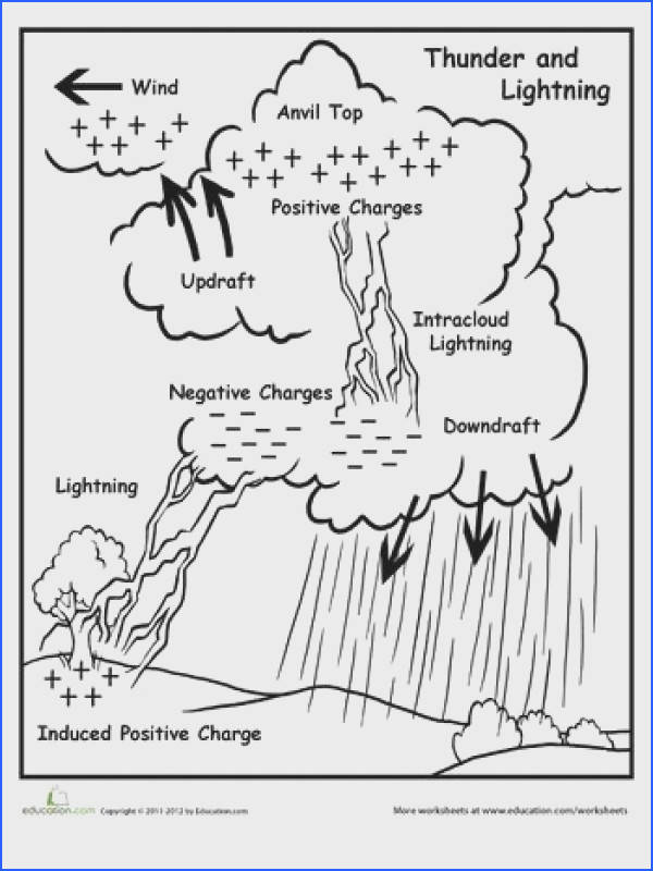 Use this lightning diagram to go along with what your child is learning about weather systems in school