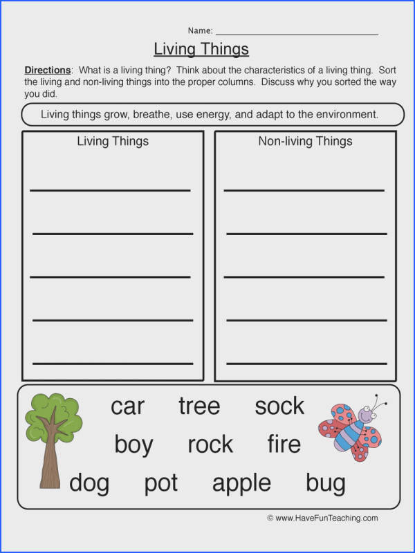 characteristics living things worksheet 2