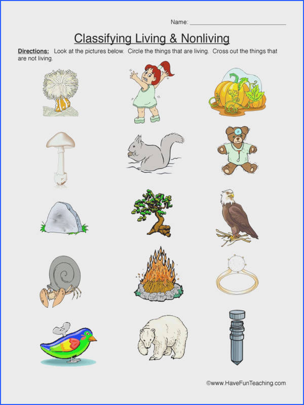 Body Parts Worksheet besides Animal Classification Worksheet together with Image Width   Height   Version moreover Characteristics Of Living Things Worksheet And Best Kindergarten Science Worksheets For Grade Nonliving Ima moreover Riverside Sofa. on classifying living nonliving things worksheet primary version