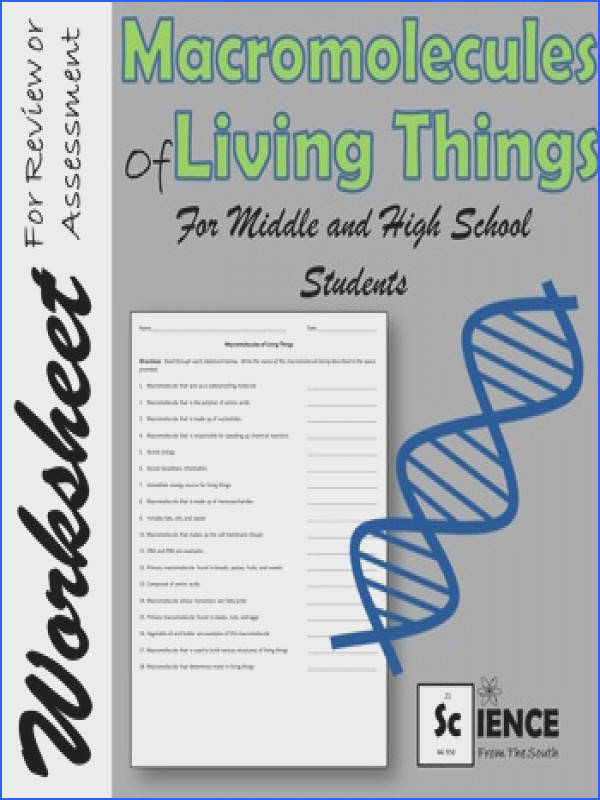 Macromolecules of Living Things Worksheet for Middle and High School Students