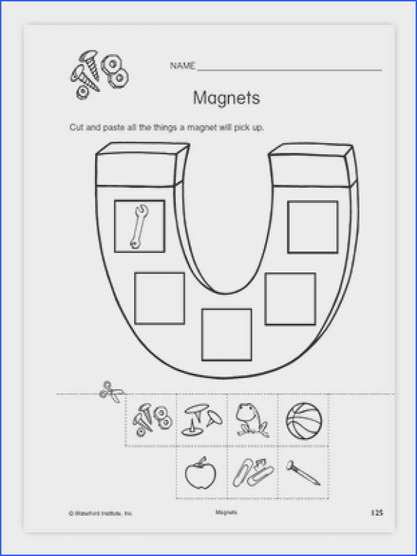 MAGNETS WORKSHEET SCIENCE