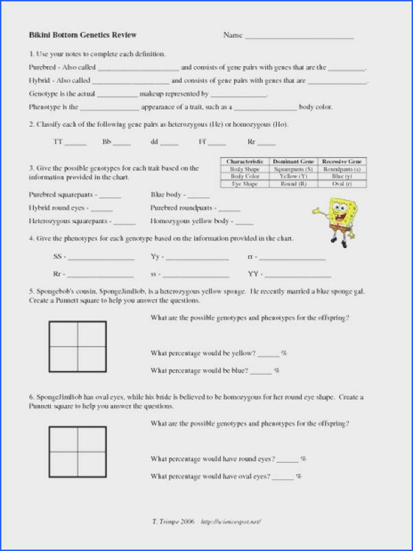 mendelian genetics worksheet answer key genetics challenge worksheet answers free worksheets library free