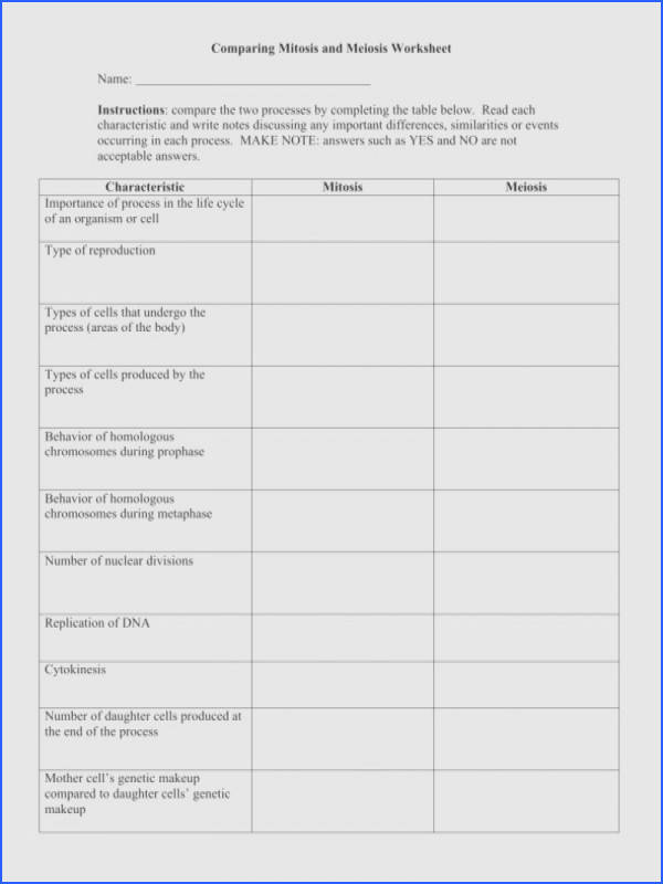 Mitosis Worksheet Middle School Mitosis Coloring Worksheet