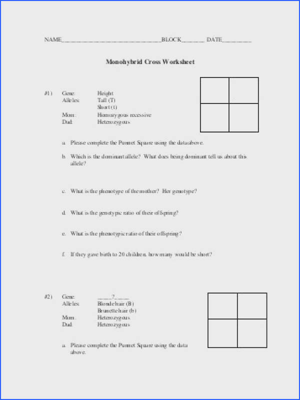 Worksheets Monohybrid Crosses Worksheet Opossumsoft Worksheets Monohybrid Cross Worksheet With Answers