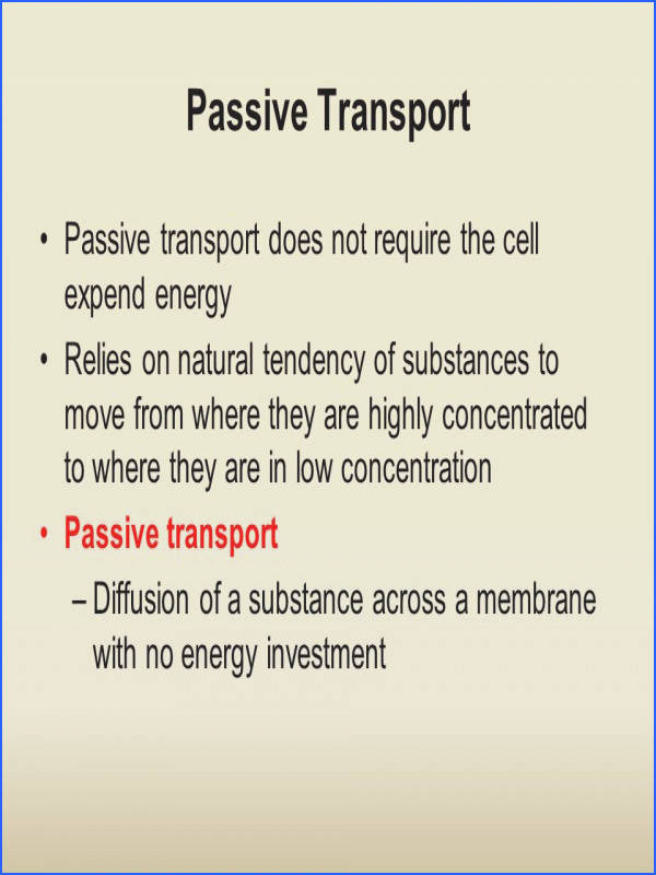 Passive Transport Passive transport does not require the cell expend energy