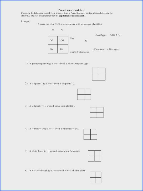 Punnett square homework Buy paper online might