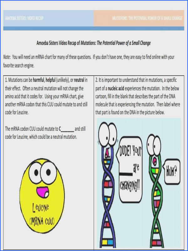 Mutation handout made by the Amoeba Sisters to visit website and scroll down to