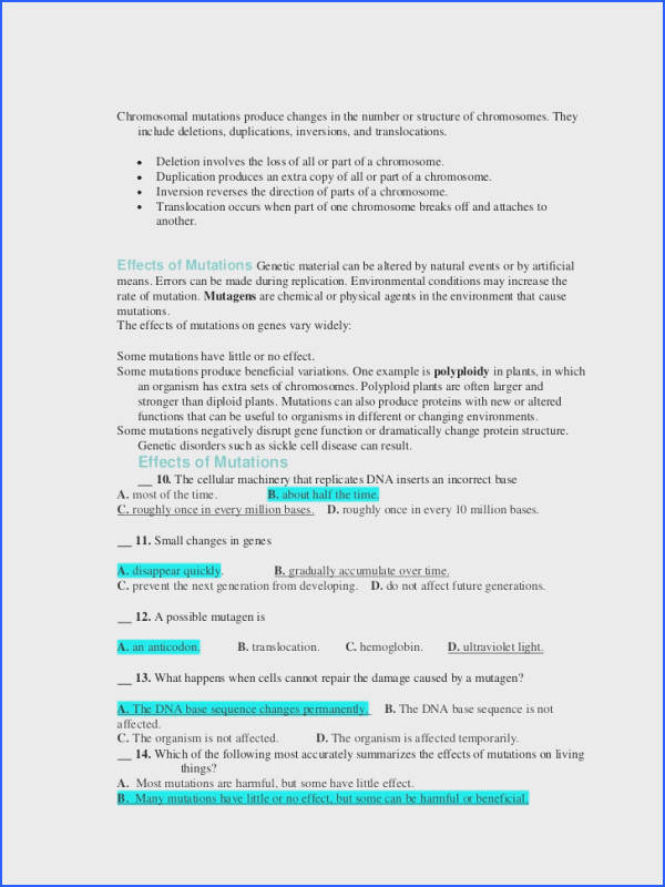 Gene Mutations Worksheet