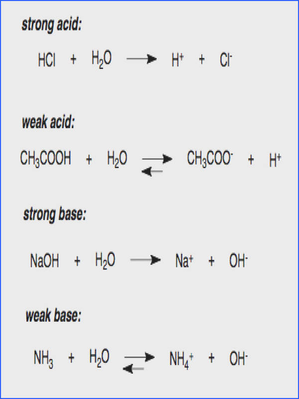 Naming Acids and Bases Worksheet Best Strength Acids s