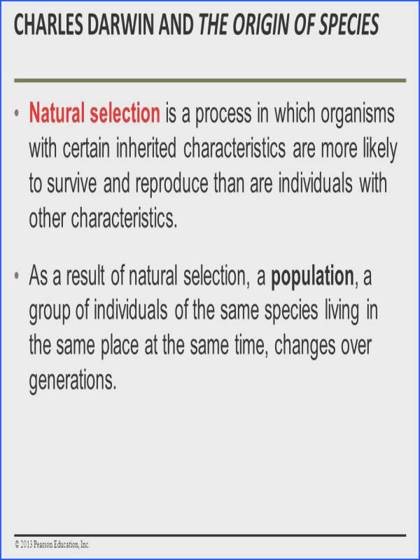 How Populations Evolve ¯'§ Charles Darwin and the Origin of Species Evolution biology4friends natural selection & evidence of evolution worksheet