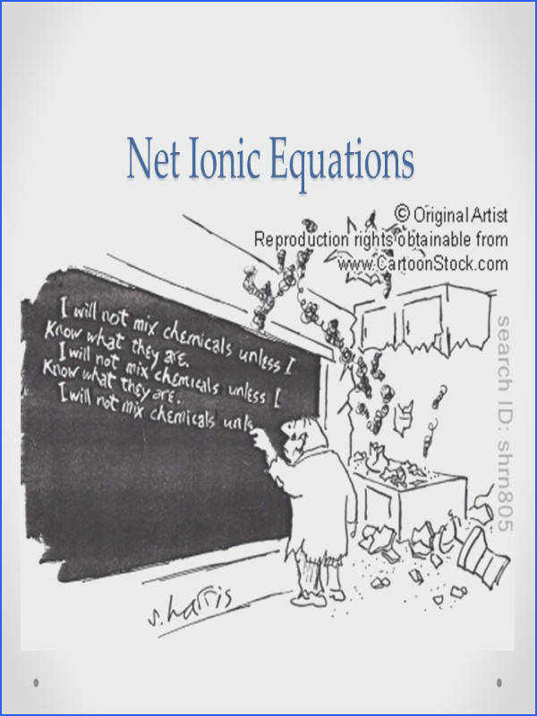 1 Net Ionic Equations