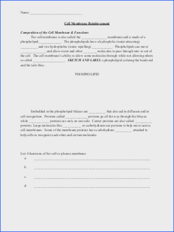 Osmosis and tonicity Worksheet Answers New Key Cell Membrane and tonicity Worksheet Pdf Stock