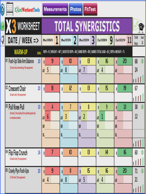 p90x3 excel total synergistics worksheet …