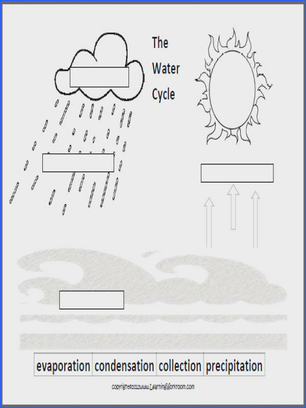 Learning Ideas Grades Oceans and the Water Cycle for Kids