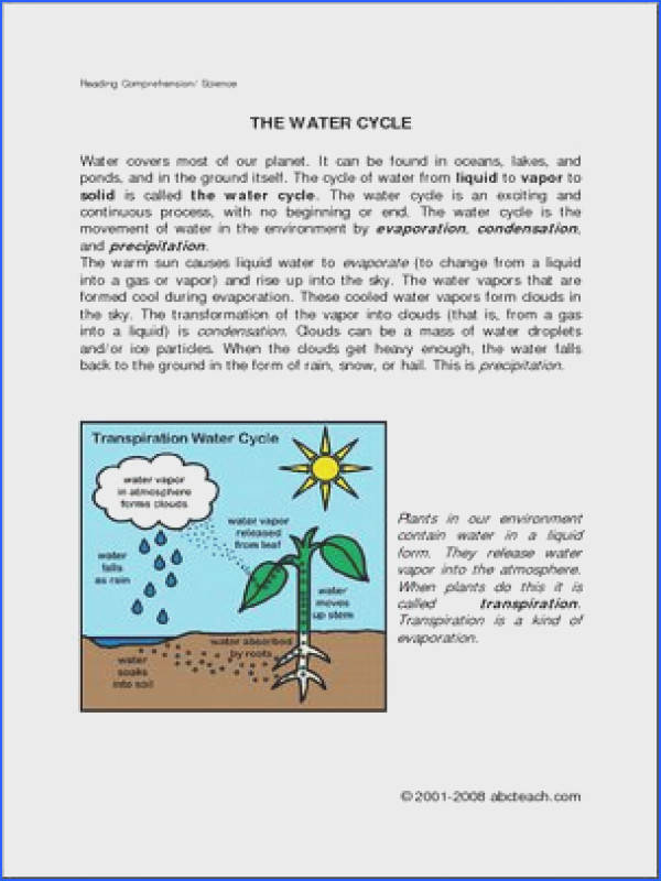 prehension Water Cycle elem upper elem Brief text on the water
