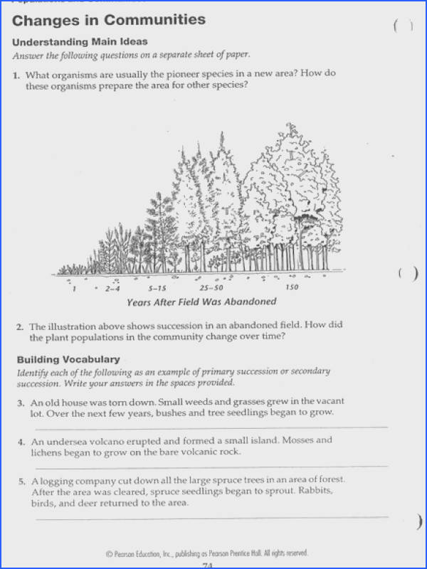 Primary Succession Worksheet