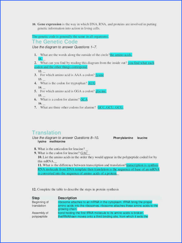 Protein Synthesis Review Worksheet Awesome 12 1 Dna Worksheet Answers Worksheets for All Stock Protein