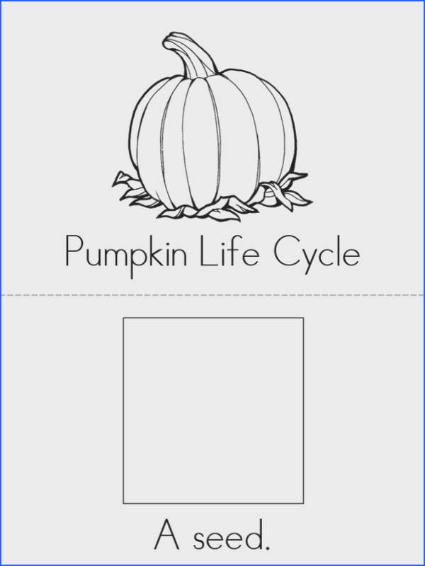 Pumpkin Life Cycle Worksheets Worksheets for all Download and Worksheets