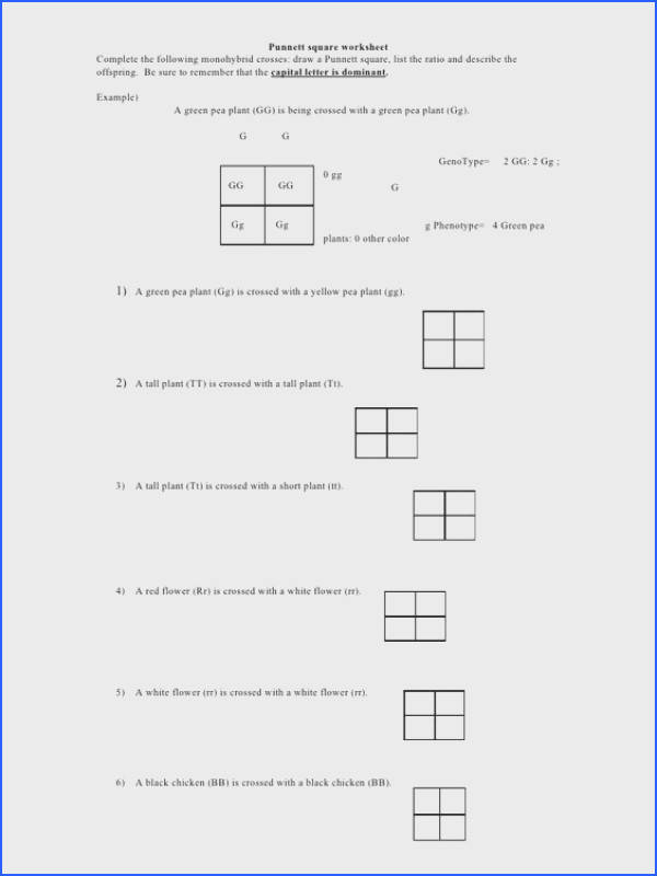Punnett Square Practice Problems Worksheet Worksheets for all Download and Worksheets