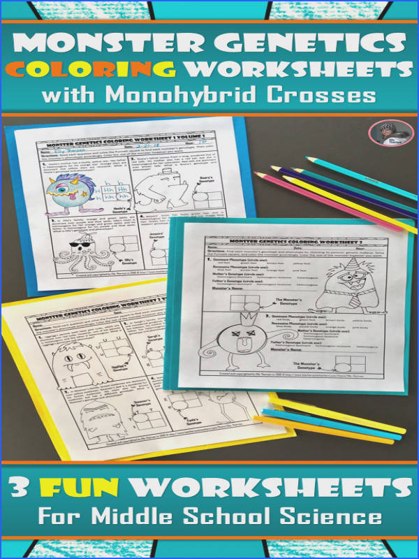 Monohybrid Cross Punnett Square Genetics Coloring Worksheet Set