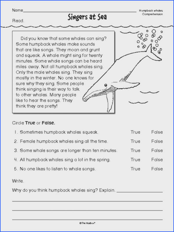 Reading prehension Worksheet nonfiction whales · 2nd Grade