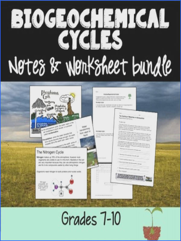 SLIDESHOW Ecology Worksheets Biogeochemical Cycles Bundle