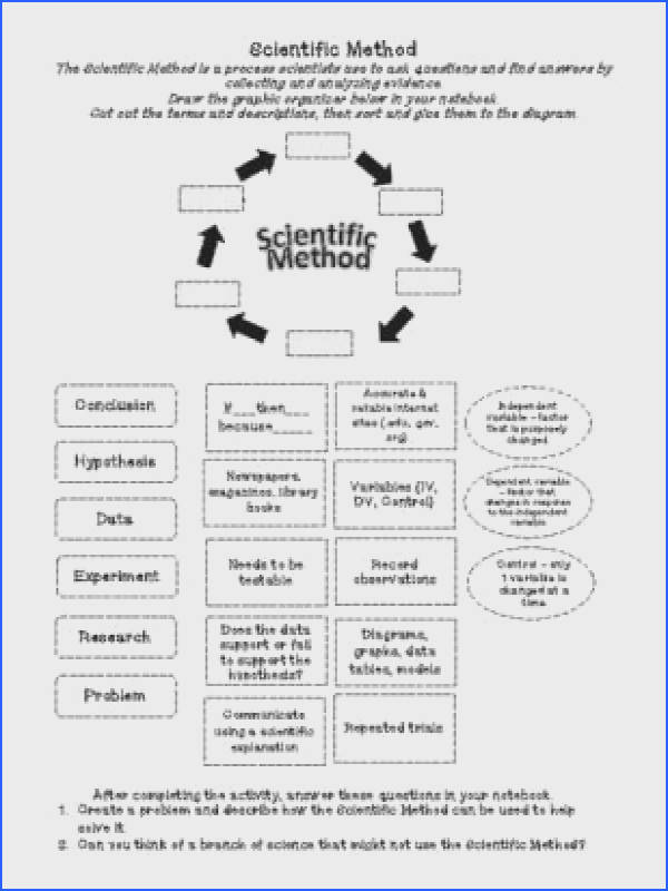 Steps of the Scientific Method cut & paste Activity from Sandy s Science Stuff on