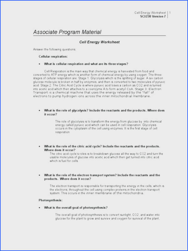 cell energy worksheet answers and medium size of transport worksheet photosynthesis making energy worksheet photosynthesis making