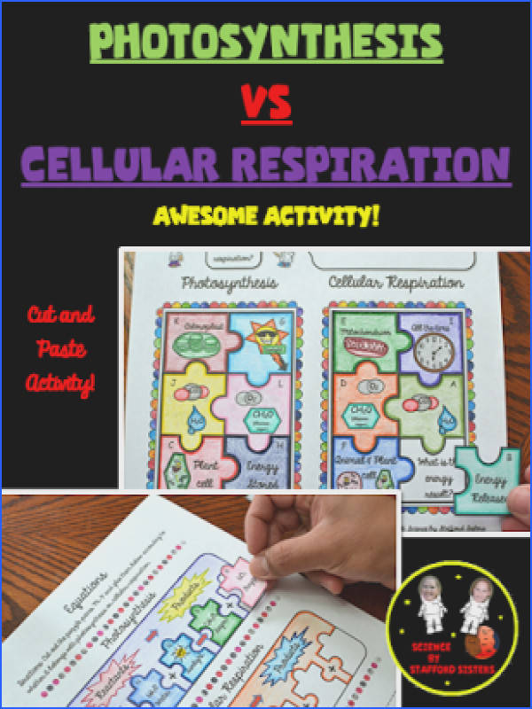 synthesis vs Cellular Respiration by mon Core Materials