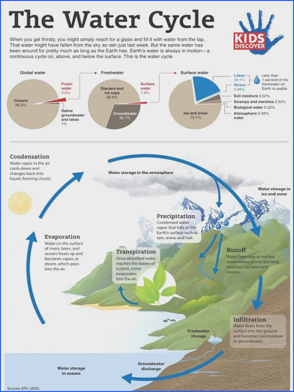 The Water Cycle explained in an easy to follow infographic thru
