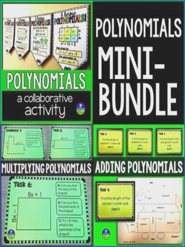 Polynomials Mini Bundle