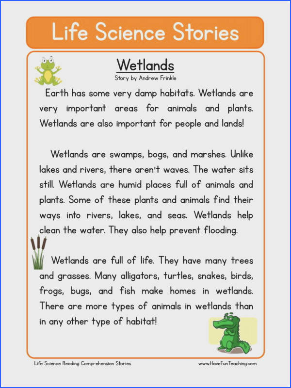 This Reading prehension Worksheet Wetlands is for teaching reading…