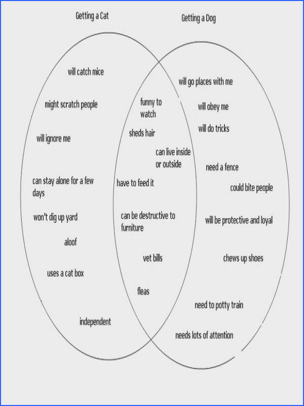 Creating an Outline for Your Essay Using a Venn Diagram
