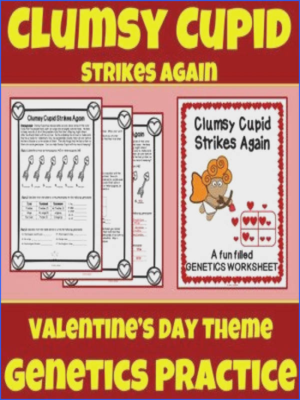 Valentine s Day Science Worksheet Genetics Punnett Squares Genotype Phenotype
