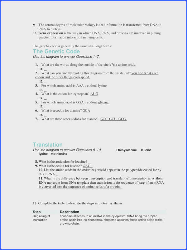 Worksheet Dna Rna and Protein Synthesis Answer Key Awesome 12 1 Dna Worksheet Answers Worksheets