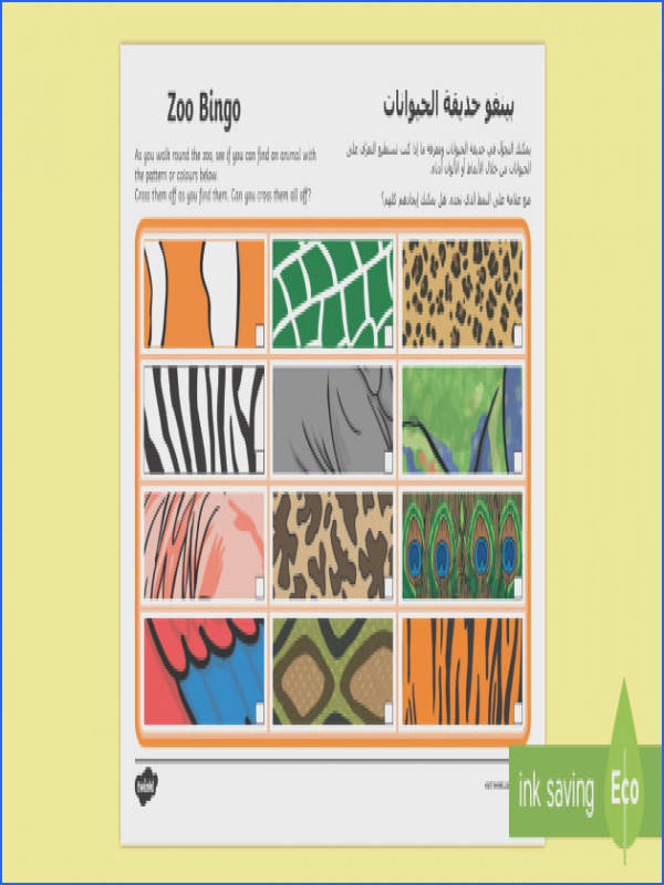 Zoo Bingo Patterns Worksheet Activity Sheet Arabic Translation Arabic English
