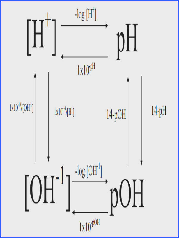1 28 pH pOH [H ] Concentration and [OH ] Concentration and Kw Constant