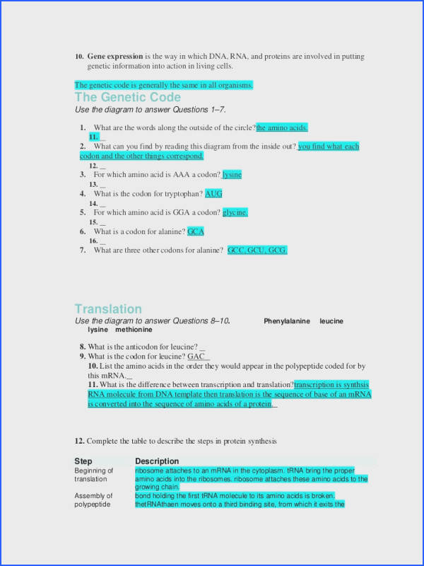 12 1 Dna Worksheet Answers Worksheets for all Download and Worksheets