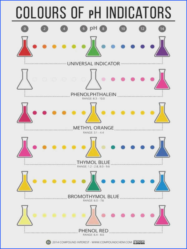 169 best C Acids and Bases images on Pinterest