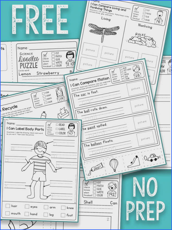 Chic Fun Science Worksheets For First Grade For Your Best 25 First Grade Science Ideas