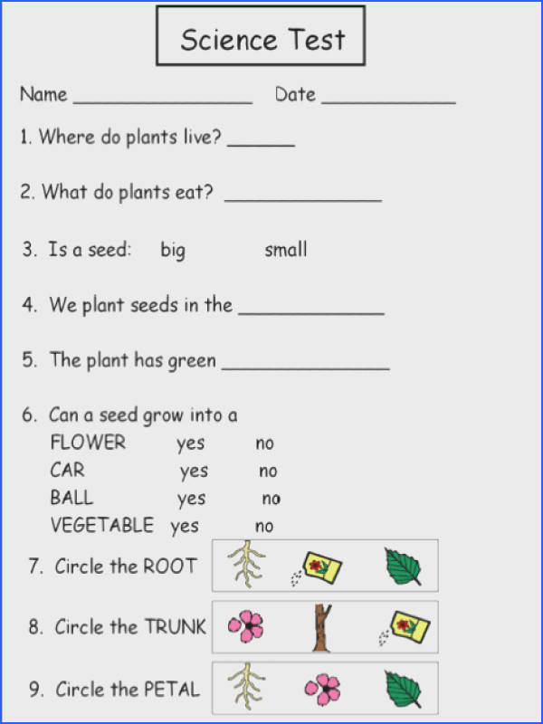 Collection of Solutions First Grade Science Worksheets Plants With Download