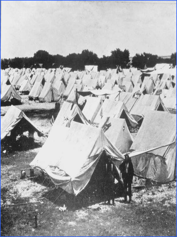 Tents set up at Camp Tampa during the Spanish American war