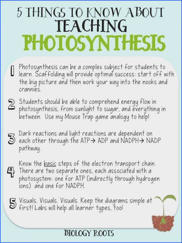 """5 Helpful Tips about Teaching synthesis formerly """"5 Things to Know about Teaching synthesis synthesis can be a difficult subject to teach"""