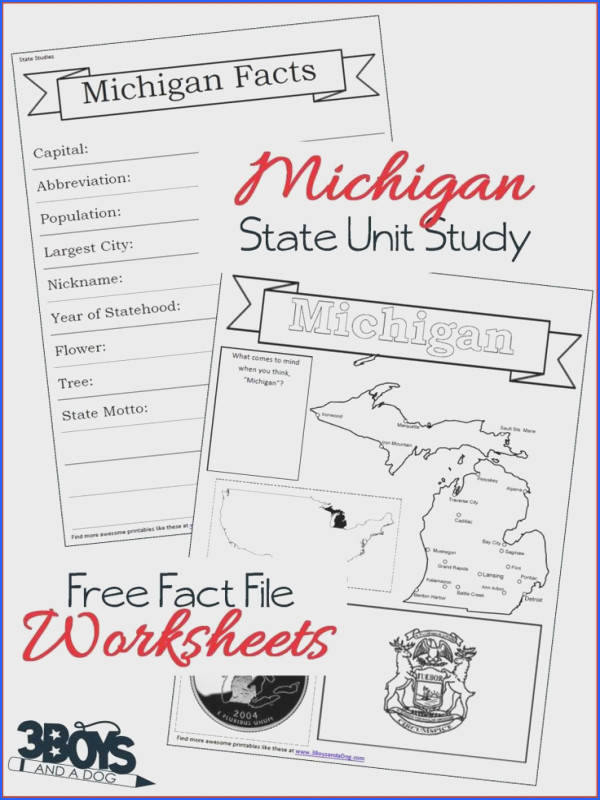 These Michigan State Fact File Worksheets are the perfect worksheets to help you and your child