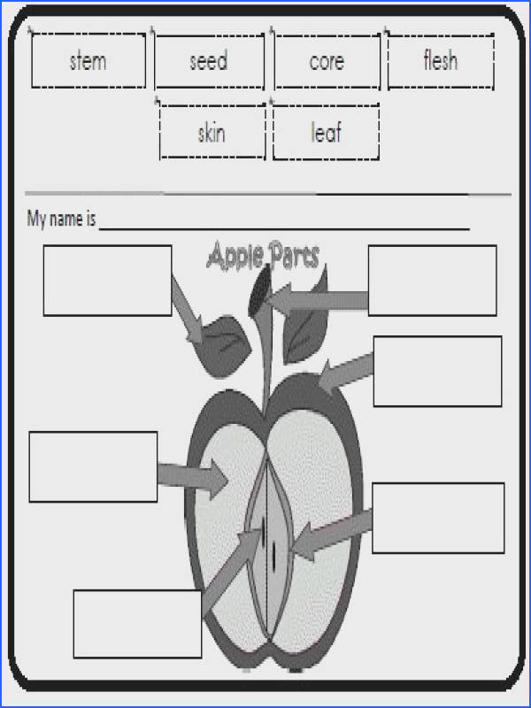 Apple Unit Theme apple printables lessons ideas poems & more To go with Johnny Appleseed Sonlight Core A