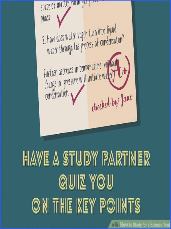 Chemistry A Study Matter Worksheet Answers Inspirational How to Study for A Science Test 12